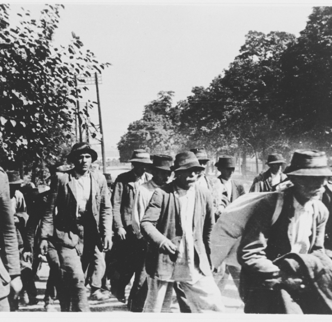 Serbi e zingari radunati e deportati dagli ustaša al campo di concentramento di Jasenovac, Croazia 1942-1943