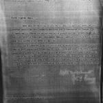 Note relative all'occupazione italiana della Jugoslavia, documento di invio all'ambasciatore americano