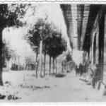 """Il Battaglione """"Garibaldi"""" della Brigata """"Italia"""" in combattimento"""