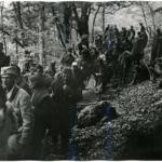 Colonna con feriti presso Zelengora nel giugno 1943