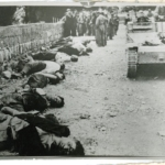 17 partigiani fucilati a Laze, provincia di Lubiana