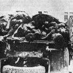 Corpi dei partigiani uccisi a malga Golobar portati a Bovec su di un carro per venir esposti